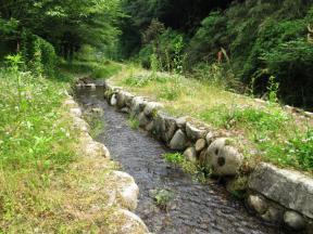 ホタルが住みやすく整備された小川