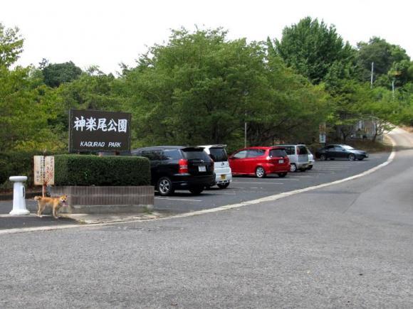 サクラちゃんのお出掛け:神楽尾公園