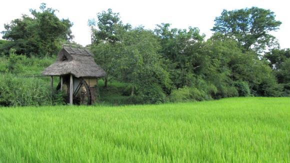 津山市勝部の「桐の木水車」