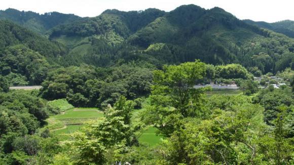 神社前からの眺め