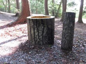 丸太…に擬態したごゴミ箱