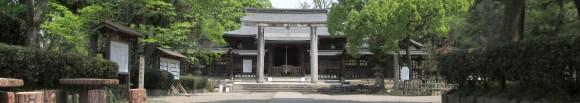 作楽神社のカキツバタとアヤメ