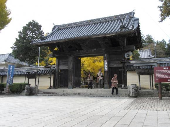 誕生寺 山門