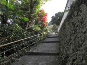 「六角堂」の参道