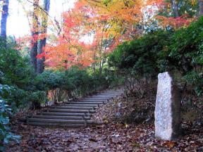 川柳が刻まれた石が置かれています