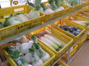 野菜 イメージ