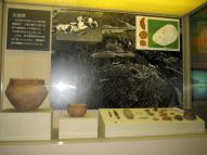 沼遺跡 発掘当時の写真と出土品