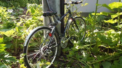 自転車デポ