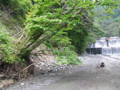 堰堤の手前から右岸を登る113 (2)