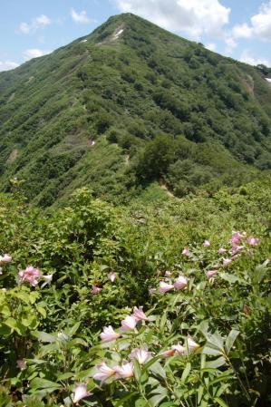 153小朝日岳からの降り