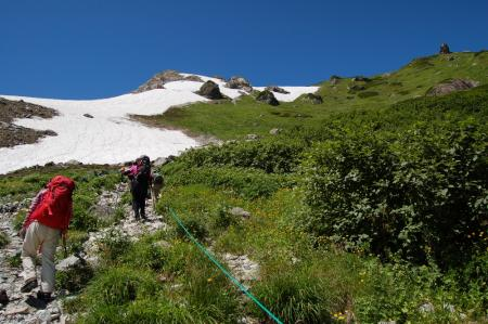 20小雪渓付近のお花畑