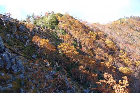 3白桧岳への尾根の紅葉