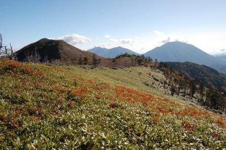 8白桧岳への笹尾根から振り返り見る