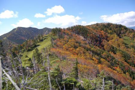 27錫ヶ岳と紅葉