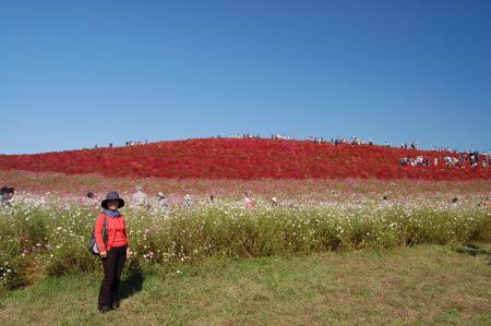 12見晴らしの丘