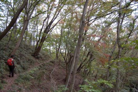23上山ハイキングコース