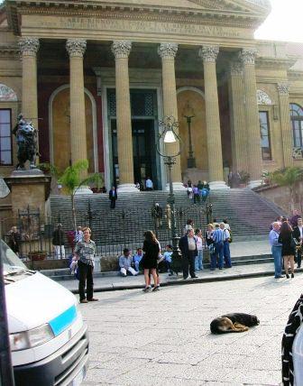 パレルモマッシモ劇場と犬
