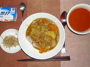 カレーライス,もやしのソテー,野菜スープ,ヨーグルト