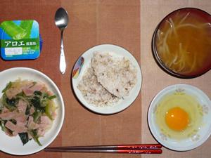胚芽押麦入り五穀米,生卵,ほうれん草の玉葱のソテー,もやしのおみそ汁,ヨーグルト