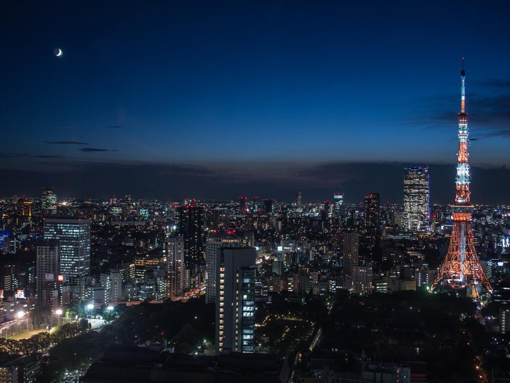 世界貿易東京タワー夜景広角02