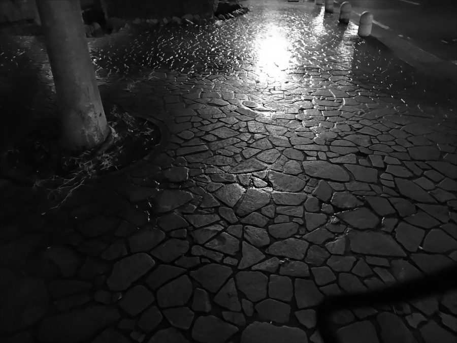 秋雨の夜濡れる路面
