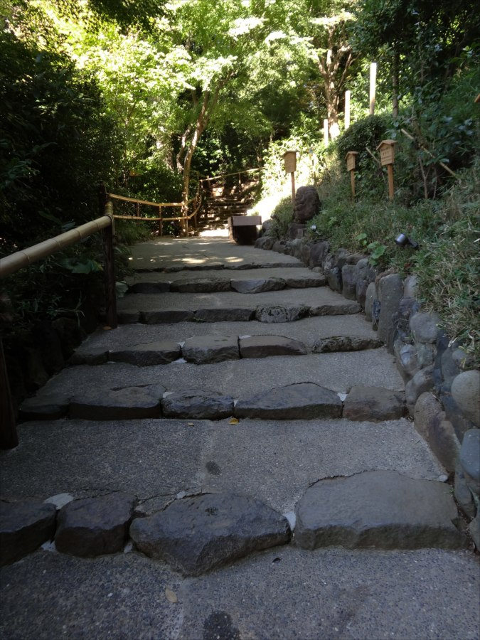 椿山荘散策路カラー