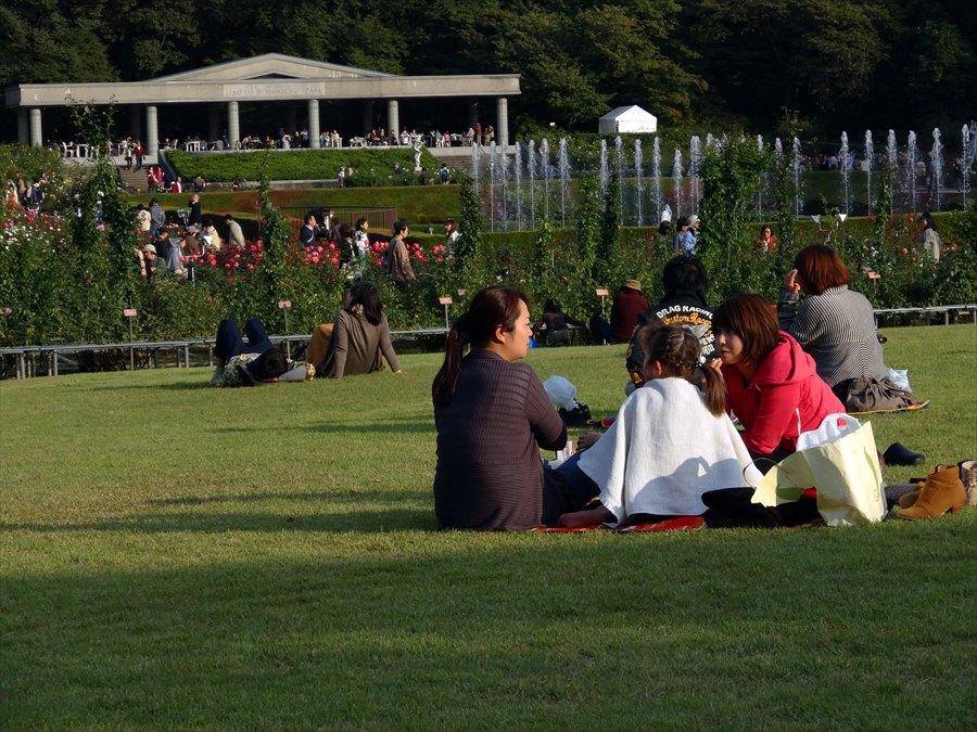 神代植物園ソニーバラ庭全景