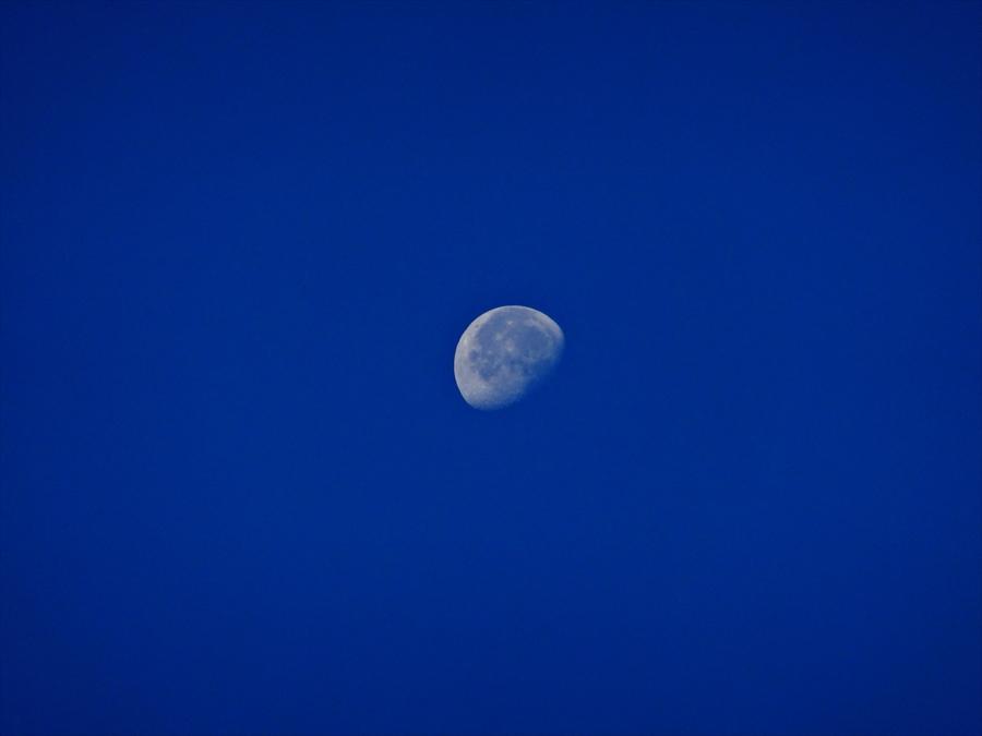 昼間月超望遠