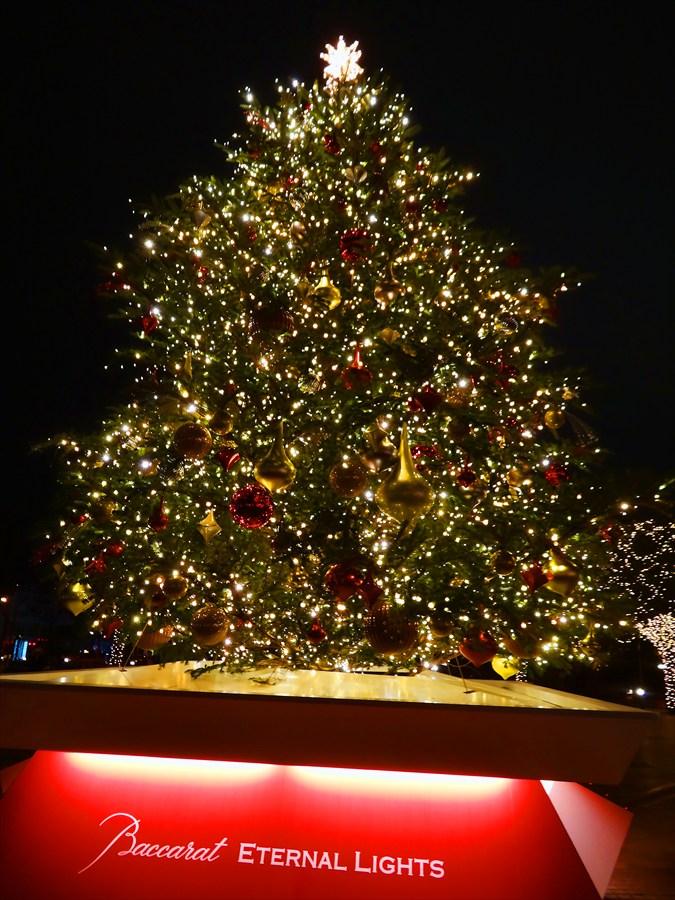 恵比寿ガーデンイルミネーションクリスマスツリー全景