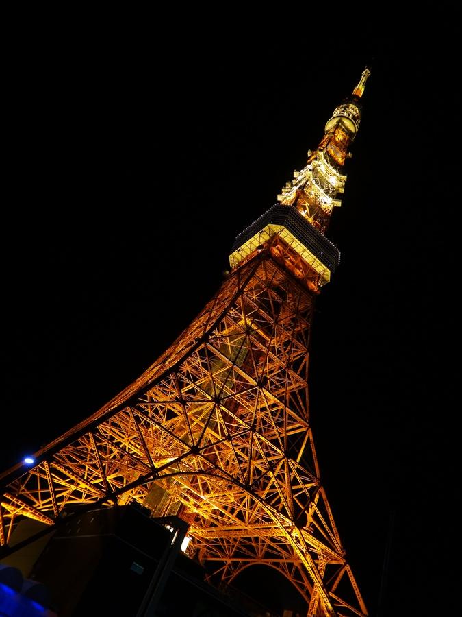 東京タワー斜め