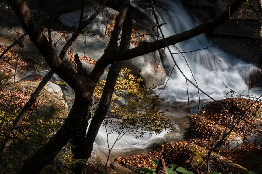 B山梨日川渓谷遊歩道スタート糸引く水流と黄葉