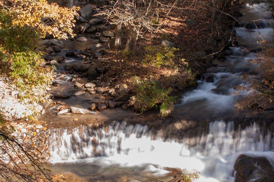B山梨日川渓谷遊歩道スタート渓流と黄葉