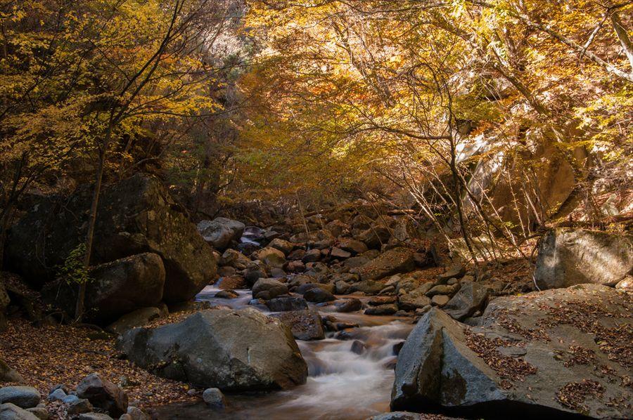 C山梨日川渓谷遊歩道河原から渓流