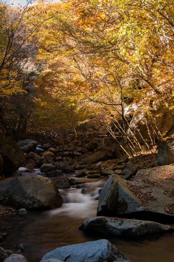 C山梨日川渓谷遊歩道河原から渓流縦奥行あり