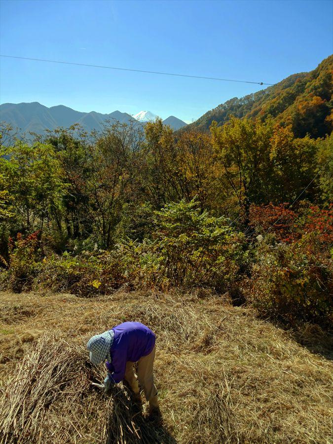 日川渓谷富士山と農婦