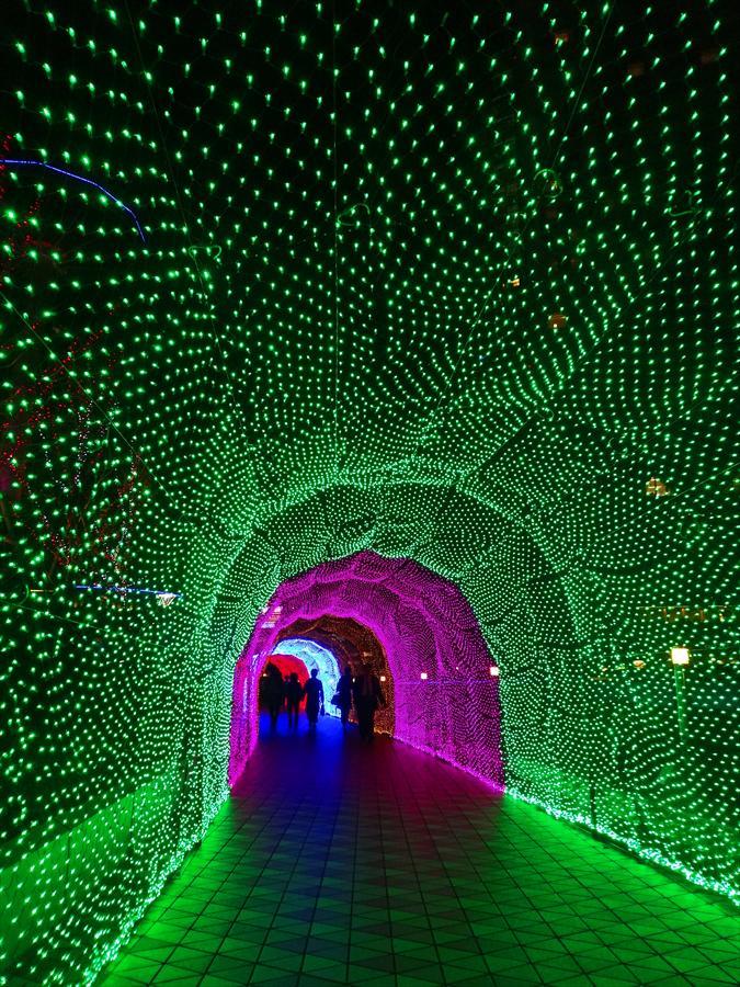 東京ドーム光のトンネル緑のトンネル03