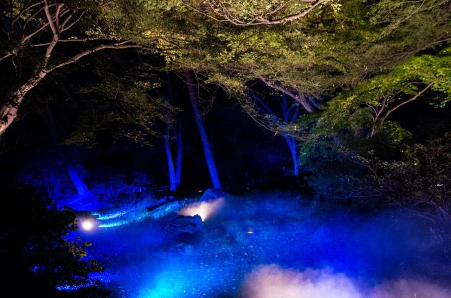 六義園ライトアップ霧とブルーライト