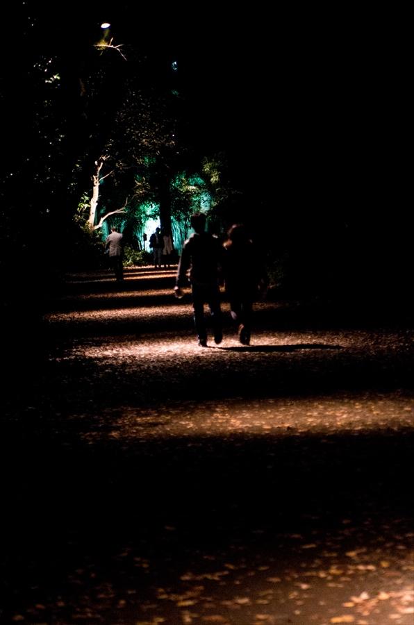 D六義園ライトアップ回遊路行くつき先光明