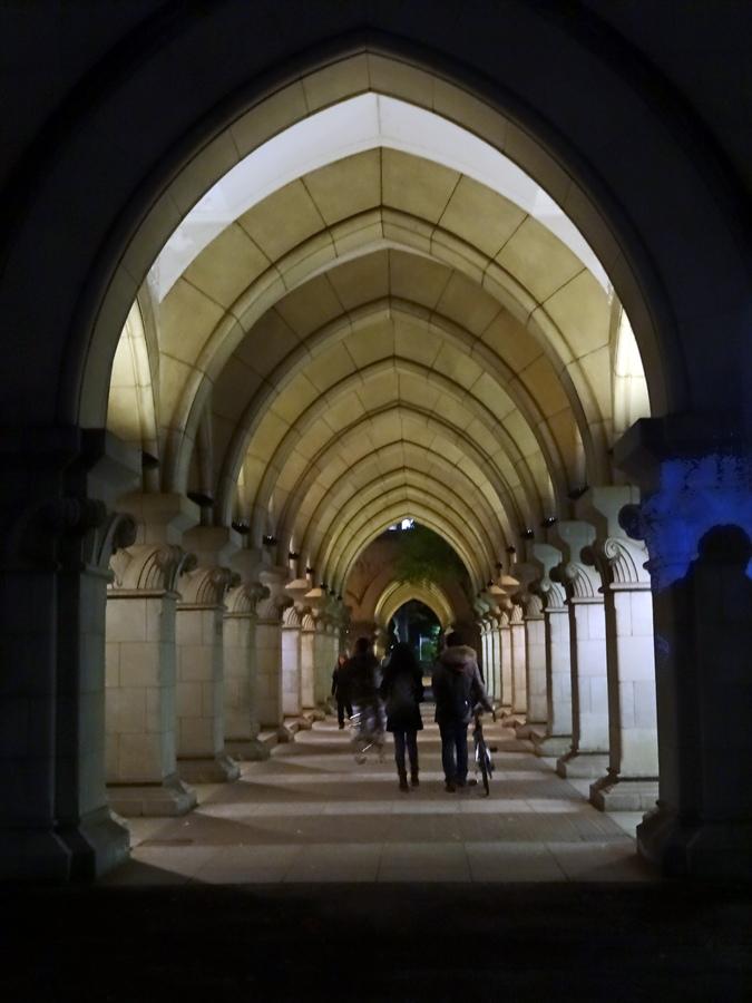 イチョウ夜イチョウ道へのトンネル04