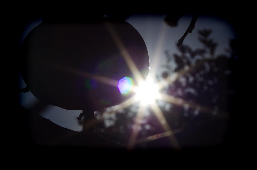 D柿太陽ダイヤモンドリング