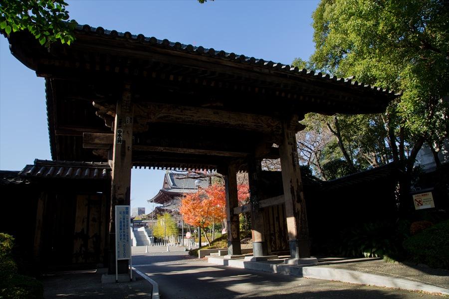 増上寺の門04