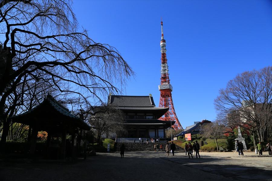 増上寺と東京タワー遠景