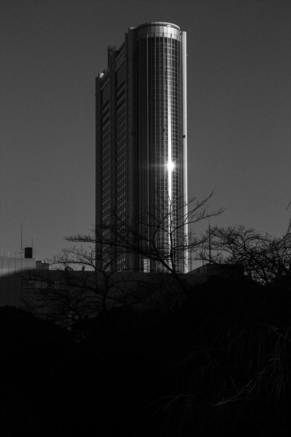 小石川後楽園気にり写真04