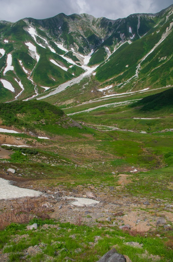 立山雷鳥沢から登り03