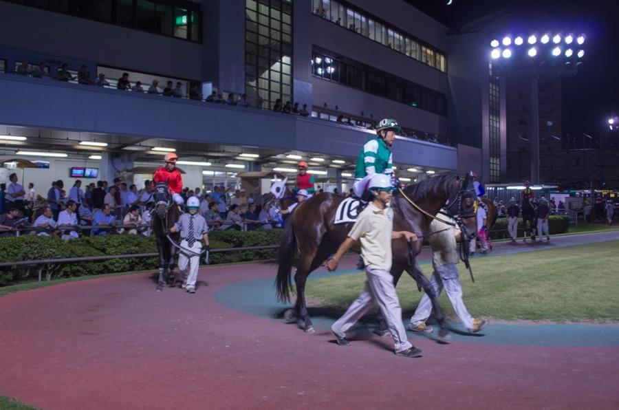 川崎競馬場パドック馬騎乗05