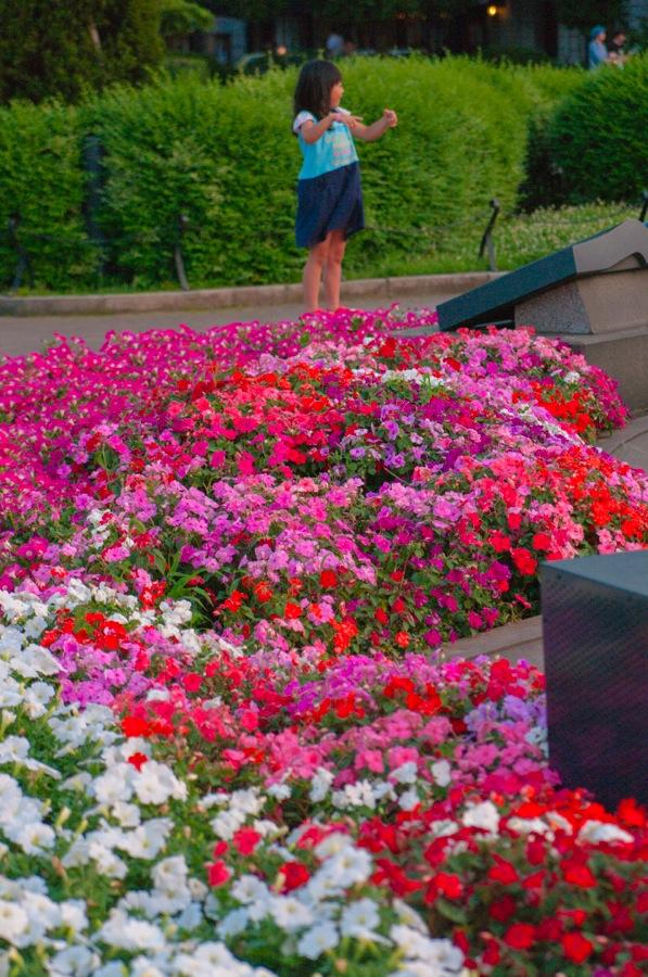 横浜山下公園噴水11