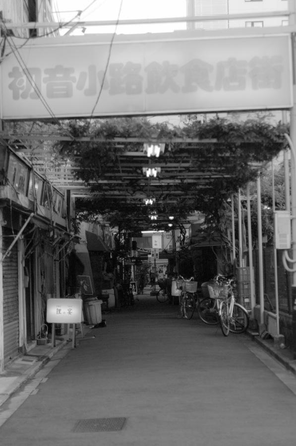 浅草風情03