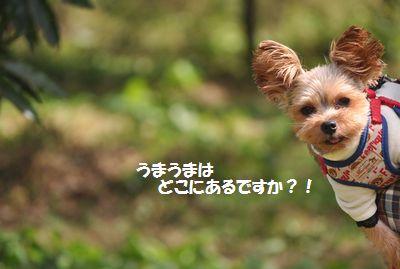 DSC_0282_20141005111211801.jpg