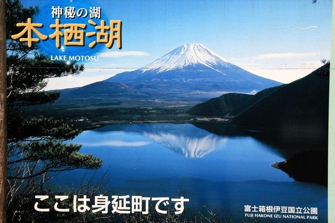 IMG_8756-20121013-133719.jpg