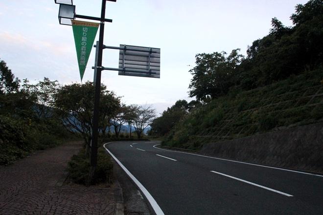 IMG_8867-20121015-163655.jpg
